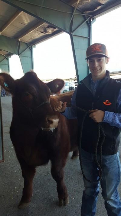 Sun Coast Resources sponsors Houston livestock show and rodeo calf scramble.
